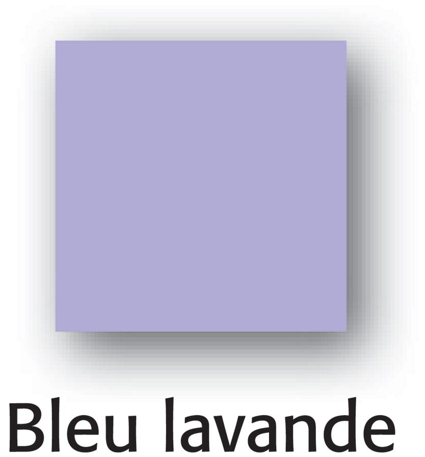 France Quincaillerie Peinture Finition Pe Bois Cecil